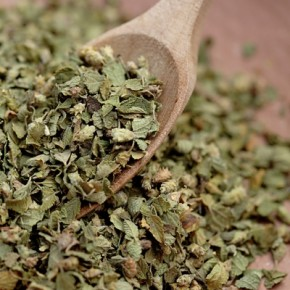 Oregano mexicano seco