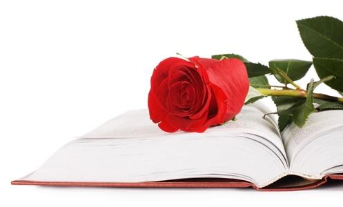 flor_y_libro_2